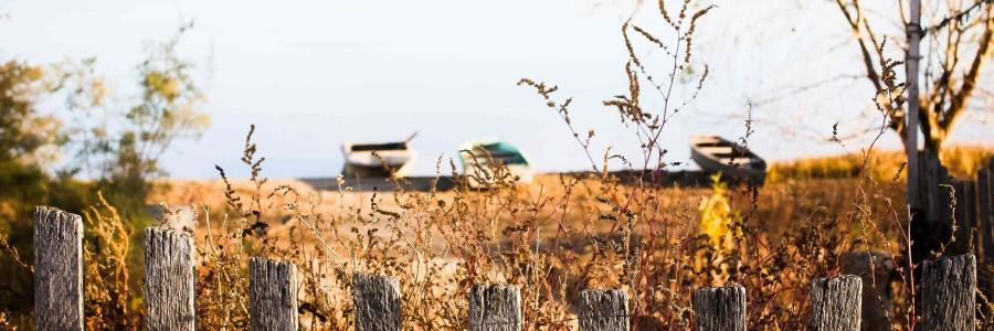 Сельский и агротуризм